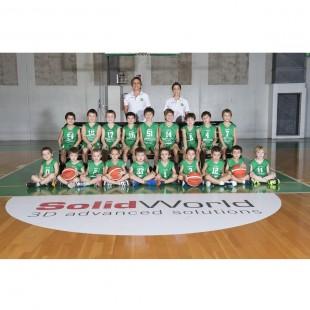 Pulcini 2010-2011